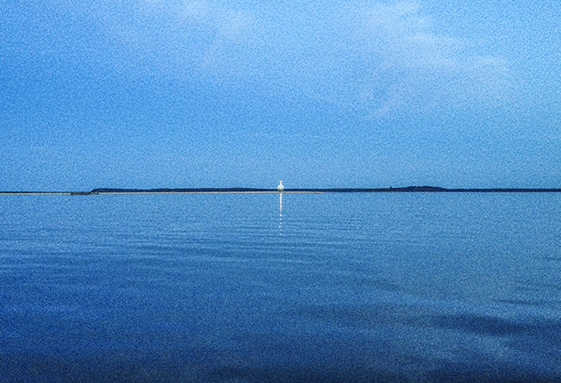 Bug Light 2